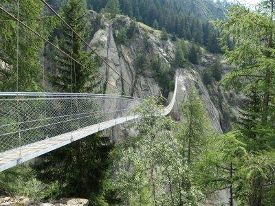 Aspi-Titter-Schweiz